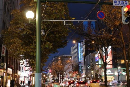 rue illuminee sapporo