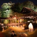 hase-dera-kamakura