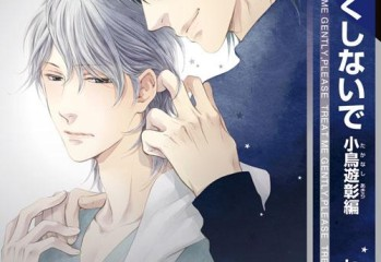Couverture japonaise du yaoi Treat me gently, please - Akira story