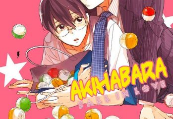 Couverture du yaoi Akihabara fall in love