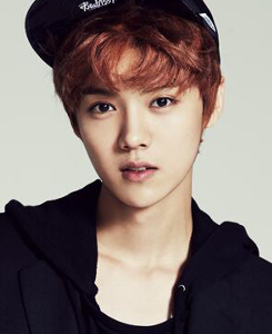 luhan cheval