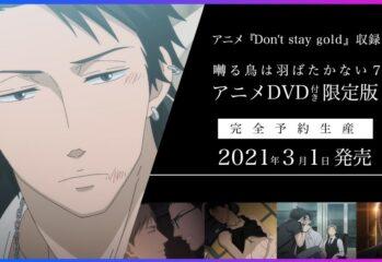 Affiche de l'OAV Saezuru Tori wa Habatakanai : Don't Stay Gold